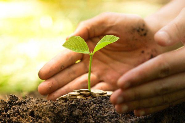 Where giving grows